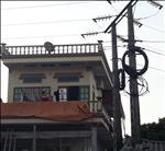 Vi phạm hành lang an toàn lưới điện: Hiểm họa mùa mưa bão