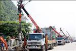 Điện lực Gia Lộc giảm 6 điểm vi phạm hành lang lưới điện